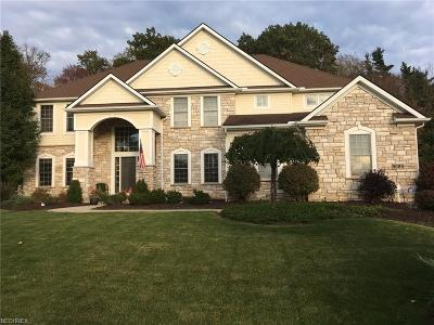 Broadview Heights Single Family Home For Sale: 9085 Ledgemont Dr
