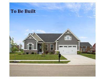Brunswick Single Family Home For Sale: 2994 Autumn Reserve Pky