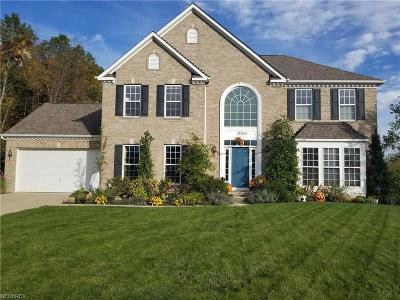 Avon Lake Single Family Home For Sale: 31580 Woodbridge Way