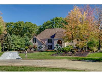 Broadview Heights Single Family Home For Sale: 8787 Pointe Dr
