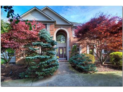 Solon Single Family Home For Sale: 6055 Penfield Ln