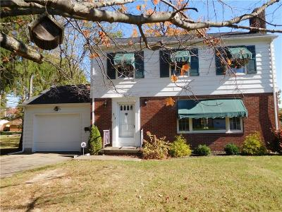 Hubbard Single Family Home For Sale: 213 Grandview Ave