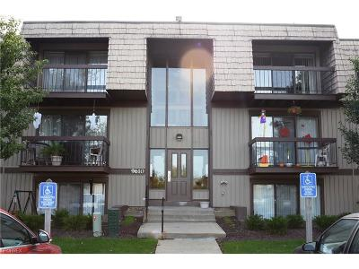 North Royalton Condo/Townhouse For Sale: 9610 Cove Dr #B15
