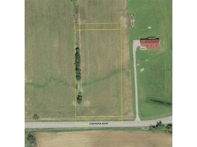 Residential Lots & Land For Sale: V/L Chippewa Rd