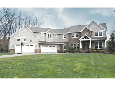Summit County Single Family Home For Sale: 3443 Haas Rd