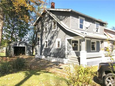 Youngstown Single Family Home For Sale: 44 Warren Ave