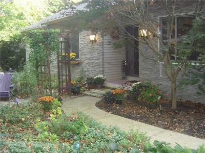 Medina Single Family Home For Sale: 1228 Pennyroyal Cir
