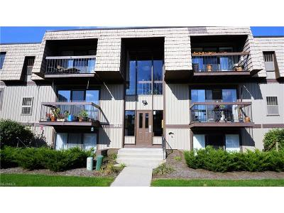 North Royalton Condo/Townhouse For Sale: 9841 Sunrise Blvd #P14