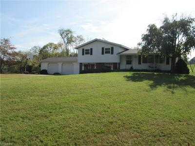 Guernsey County Single Family Home For Sale: 65121 Mathews Rd