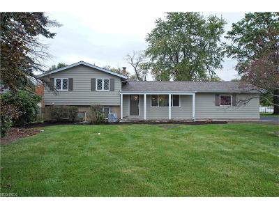 Solon Single Family Home For Sale: 7365 Som Center Rd