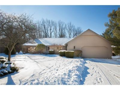 Strongsville Single Family Home For Sale: 22053 Little Brook Way