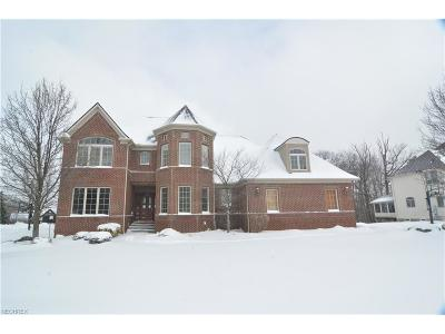 Broadview Heights Single Family Home For Sale: 1471 Summerwood Dr