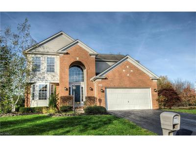 Chagrin Falls Single Family Home For Sale: 143 Coventry Ct