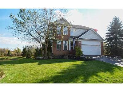Chagrin Falls Single Family Home For Sale: 142 Coventry Ct.