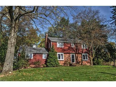 Chagrin Falls Single Family Home For Sale: 217 Willow