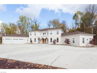 Geauga County Single Family Home For Sale: 8502 Pilgrim Ave
