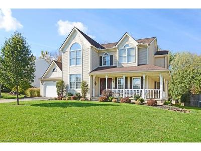 Strongsville Single Family Home For Sale: 14084 Crystal Creek Dr