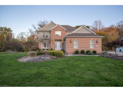 Broadview Heights Single Family Home For Sale: 9641 Amberwood Ct