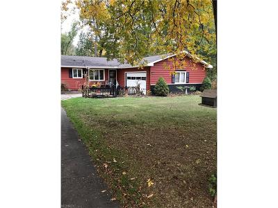 Elyria Single Family Home For Sale: 10308 East River Rd
