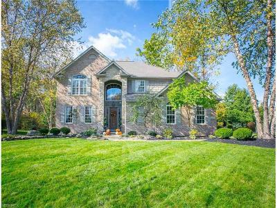 Medina Single Family Home For Sale: 5970 Flowering Woods Dr