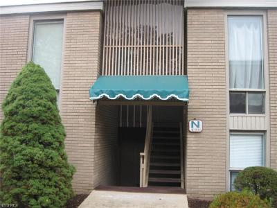 Brecksville Condo/Townhouse For Sale: 6640 Chaffee Ct #N-3