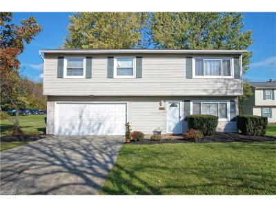 Twinsburg Single Family Home For Sale: 10005 Serene Ct