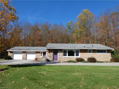 Chardon Single Family Home For Sale: 10954 Howard Dr