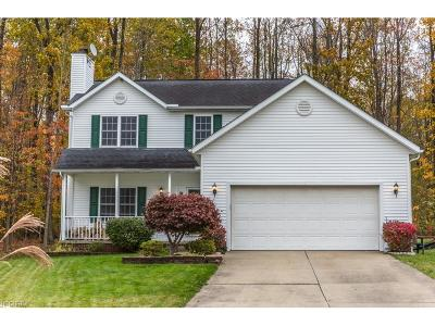 Chardon Single Family Home For Sale: 123 Sugarbush