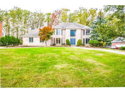Broadview Heights Single Family Home For Sale: 8570 Countryview Dr