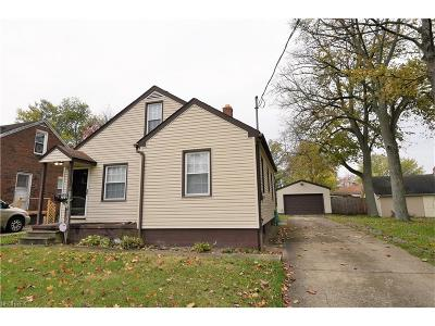Youngstown Single Family Home For Sale: 222 South Schenley Ave
