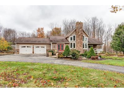 Chardon Single Family Home For Sale: 10400 Kile Rd