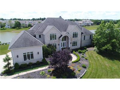 Medina Single Family Home For Sale: 4070 Montauk Pointe