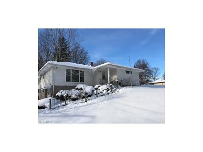 Brecksville, Broadview Heights Single Family Home For Sale: 8222 Wyatt Rd