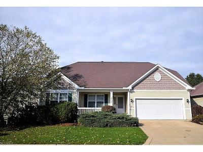 Olmsted Falls Single Family Home For Sale: 9126 East Windsor Dr