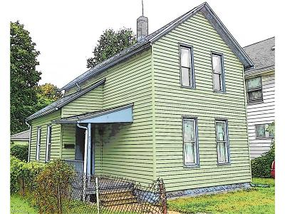 Summit County Single Family Home For Sale: 876 Sherman St