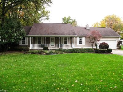 Canfield Single Family Home For Sale: 5131 Tippecanoe Rd