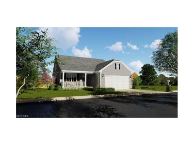 Licking County Single Family Home For Sale: 792 Francis Dr