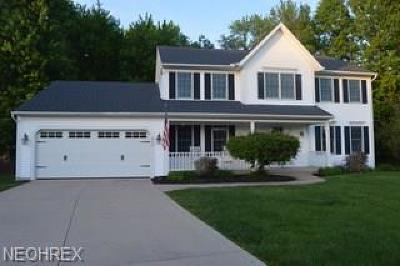Olmsted Falls Single Family Home For Sale: 8478 Forest View Dr