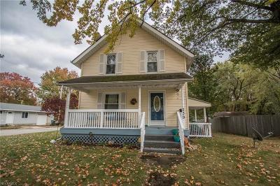 Wadsworth Single Family Home For Sale: 239 Grandview Ave