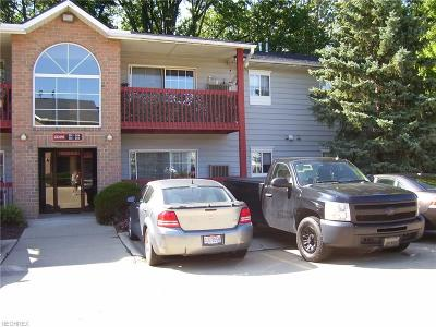 Olmsted Township Condo/Townhouse For Sale: 27097 Oakwood Cir #204Z