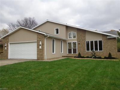 Strongsville Single Family Home For Sale: 8329 Lorraine Dr