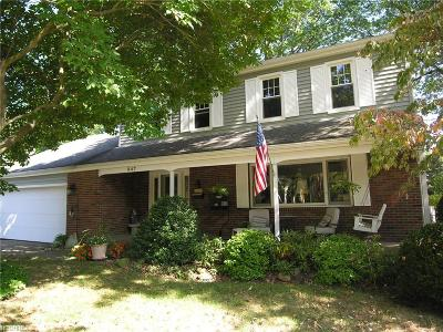 Avon Lake Single Family Home For Sale: 247 Moorewood Ave