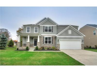 Highland Heights Single Family Home For Sale: 241 East Legend Ct