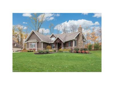 Medina Single Family Home For Sale: 5949 Upland Ridge Dr
