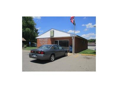 Muskingum County Commercial For Sale: 315 Main St