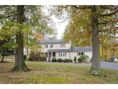 Twinsburg Single Family Home For Sale: 9186 Chamberlin Rd