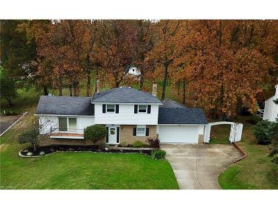 Willoughby Hills Single Family Home For Sale: 2489 Alan Dr