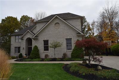 Broadview Heights Single Family Home For Sale: 3176 Oakwood Trl