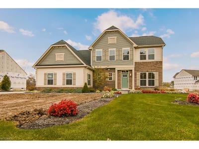 Avon Single Family Home For Sale: 39686 French Creek Rd