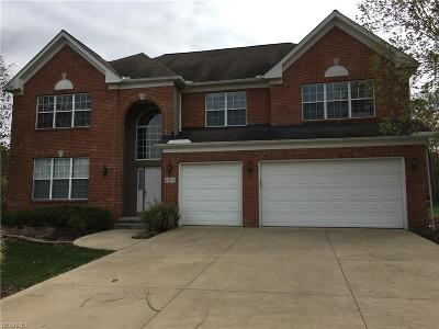Strongsville Single Family Home For Sale: 14122 Panorama Pky